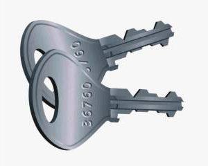 copy of lion keys